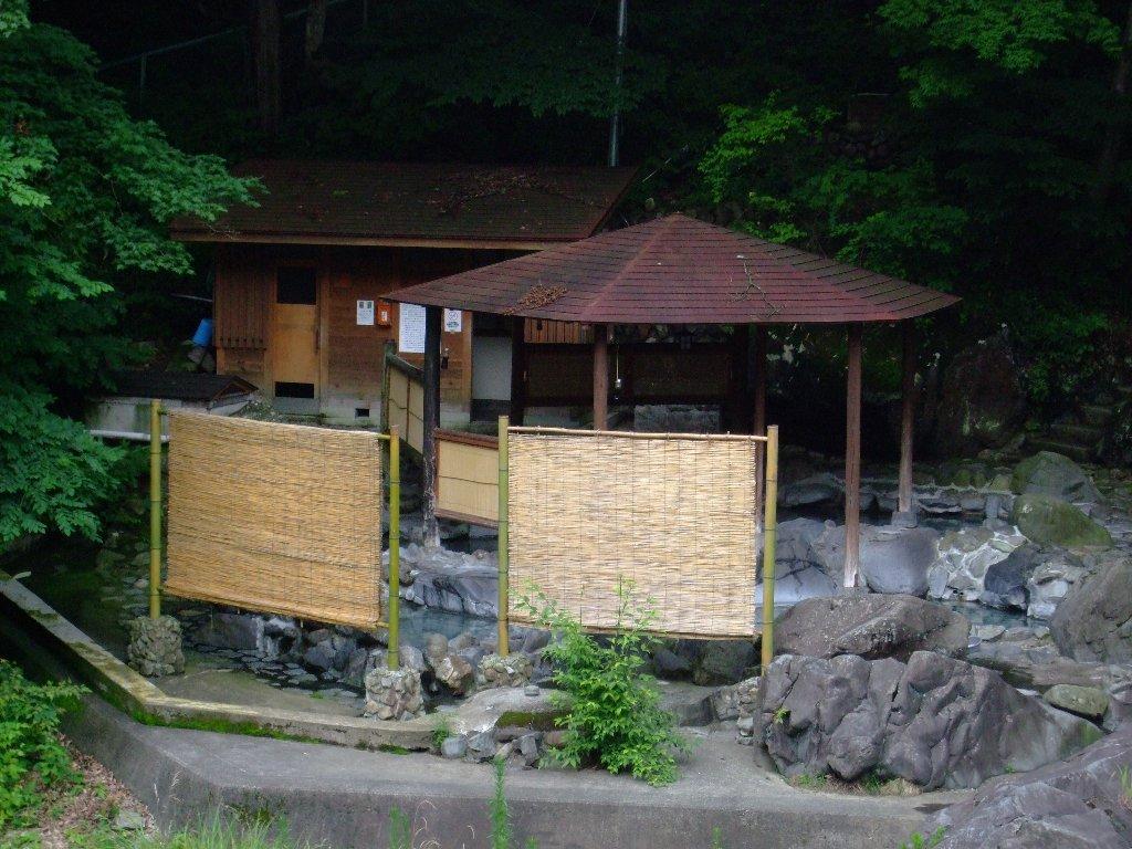 Yamaguti1